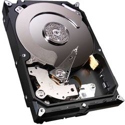 Seagate Constellation CS 2TB, 7200rpm, 64MB ST2000NC001