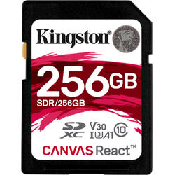Canvas React SDXC, 256GB, Clasa 10, UHS-I U3