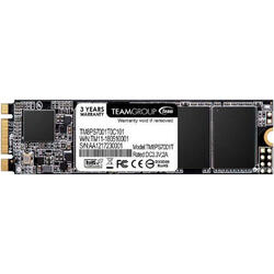 MS30 256GB SATA-III M.2 2280